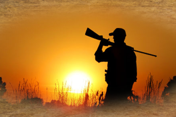 south african hunting safaris prices
