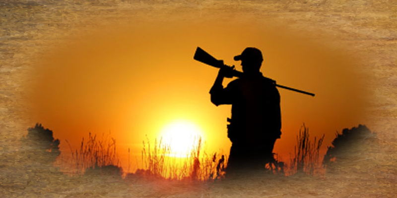 south africa hunting safaris prices
