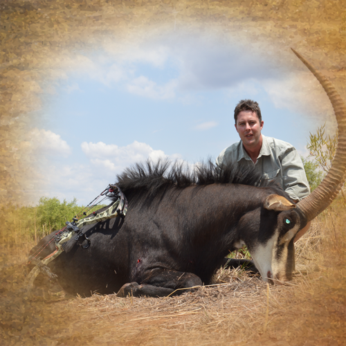 bow hunting in africa south africa