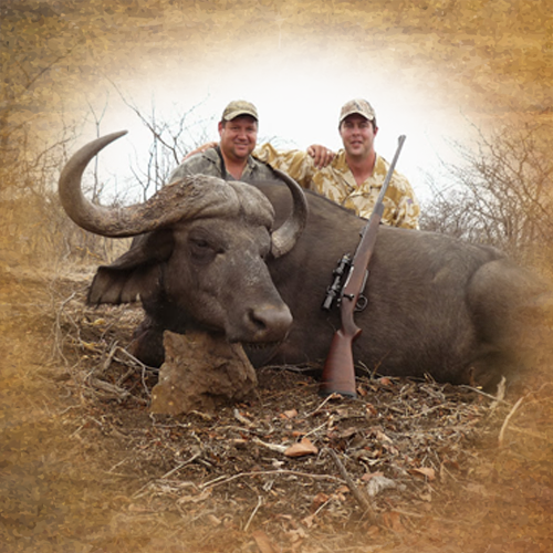 buffalo hunting in africa south africa prices